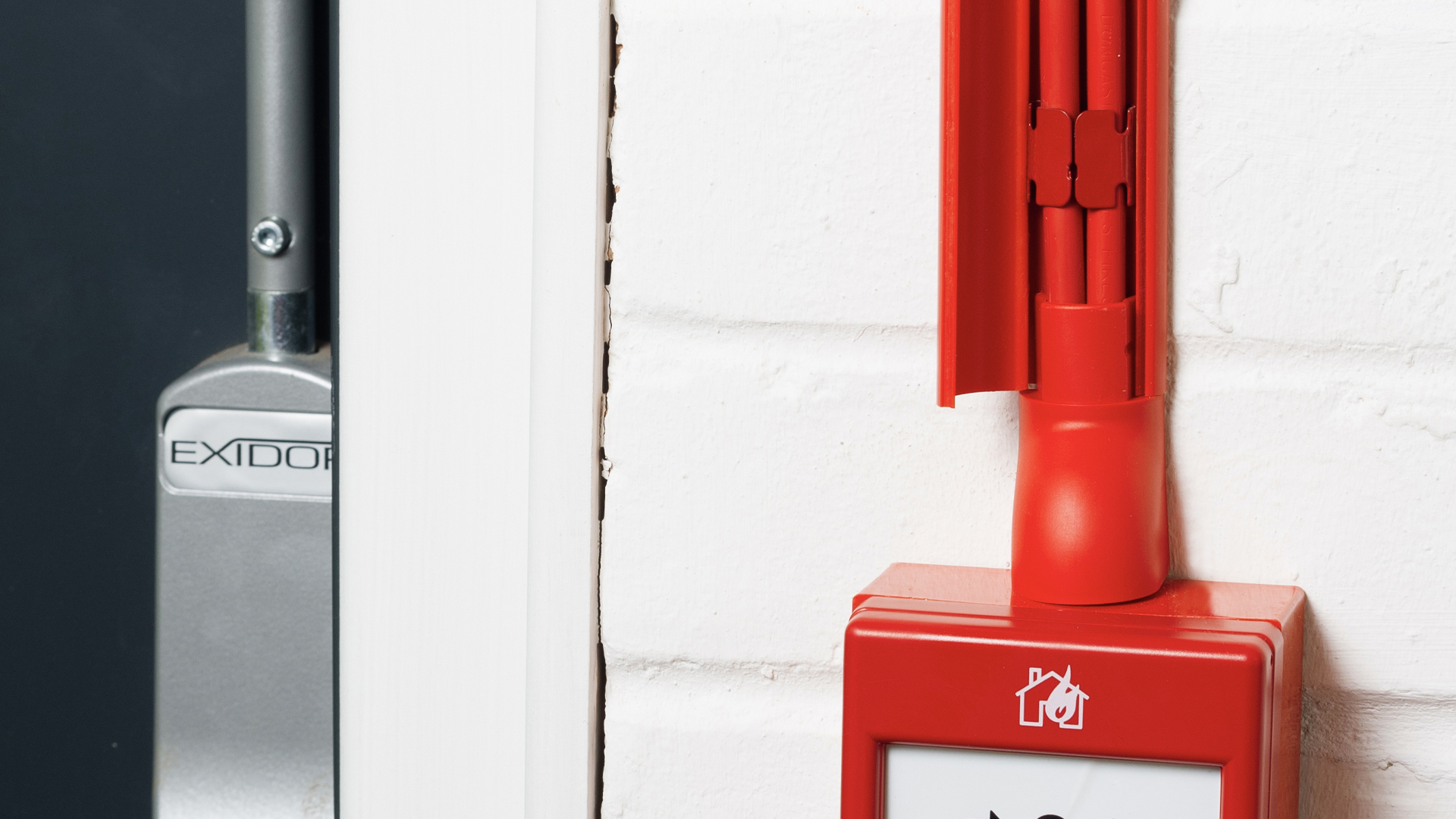 D-Line U-Clip 30 Red SAFE-D30/RED